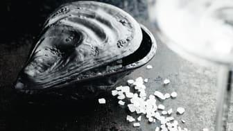Nicht nur für Gourmet-Fans: in mattem Schwarz ist die Rosenthal Salzauster ein edler Hingucker zu Tisch.
