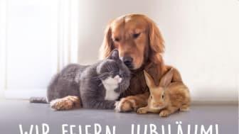 Jubiläums-Visual und Logo