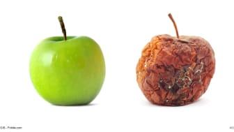 """In der Frage """"frisch gepflückter Apfel"""" vs. """"matschiger, schimmliger Apfel"""" gibt es keinen Spielraum. Bei """"gefühltes Alter"""" vs. """"tatsächliches Alter"""" hingegen schon."""
