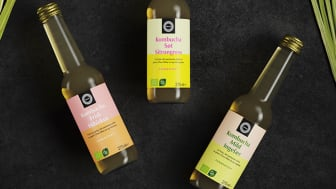 Nå lanserer Helios kombucha i de tre forfriskende smakene Mild Ingefær, Frisk Hibiskus og Søt Sitrongress.