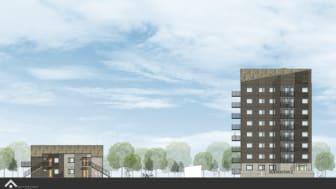 På Högasten blir det 67 nya lägenheter, fördelat på två åttavåningshus och två tvåvåningshus.  På taken blir det sedum och solceller. Samtliga lägenheter har balkong eller uteplats.