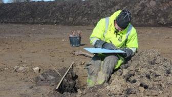 ROMUs arkæolog Astrid Wolff-Jensen i felten. Over en fyraftensøl kan du høre hende fortælle om uroksen og om de spor oldtidens mennesker har efterladet i området, hvor Roskilde i dag ligger. Foto: Museumskoncernen ROMU.