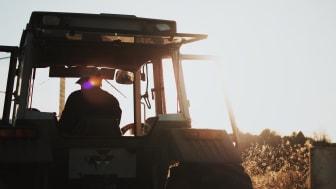 Rapportsläpp 13/5: Så kan livsmedelsbranschen minska sin klimatpåverkan