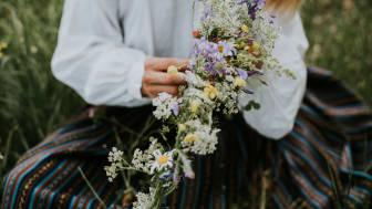 Bild från Shutterstock.com