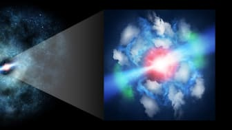 ALMA Resolves Gas Impacted by Young Jets from Supermassive Black Hole - Kindai University