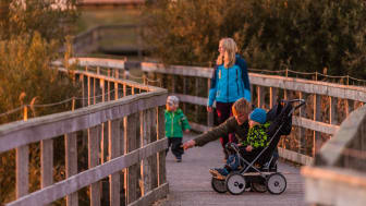 Fågeludden, Hornborgasjön. Foto: Jesper Anhede