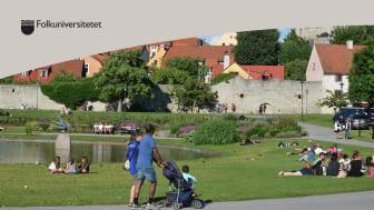 Folkuniversitetet anordnar ett seminarium om språk och integration i Almedalen.