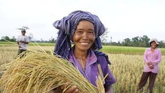 Seminarium: Hur vi får maten och planetens resurser att räcka till alla