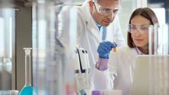 AbbVie und Genmab schließen Forschungskooperation in der Onkologie