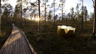Unique wooden architecture at Stockholm Furniture & Light Fair