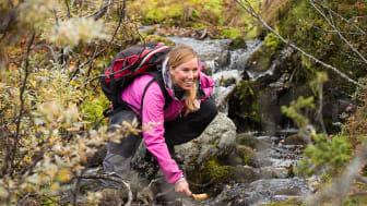 Stort intresse för fjällvandring när svenskar turistar på hemmaplan