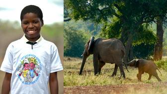 Alla 100 000 barn – en hel generation – i ett nationalparksområde i Zimbabwe och Moçambique utbildas i projektet Peace & Changemaker Generation.