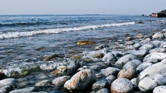 Småföretagarnas Riksförbund delar inte Strandskyddsutredningens slutsatser