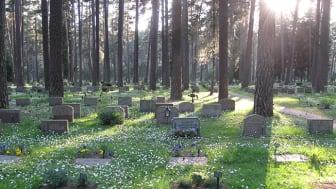 Sedan den första april sköter Svevia, på uppdrag av Stockholm Stads kyrkogårdsförvaltning, om grönytor och gravytor på den norra delen av Skogskyrkogården. Foto Karin Söderling