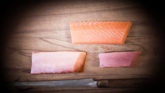 Hantering av certifierad fisk på Yasuragi