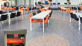CascoLin Plus - Nytt superlim från Casco Floor Expert