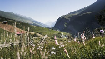 "Nomady-Camp ""Gassli"" im Safiental, Graubünden (c) Nomady"