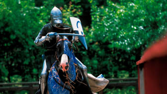 Auf den Spuren der Wikinger, Ritter und Könige - Mit Scandlines das historische Dänemark entdecken