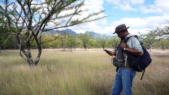 Trädplantering i Nicaragua