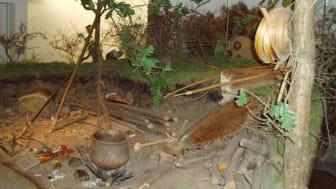 Jægerstenalder-boplads på Vedbækfundene