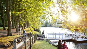 Nordisk Parkkongress – staden där man hellre är ute än inne