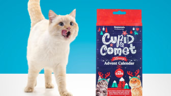 Cupid & Comet julekalender til katt