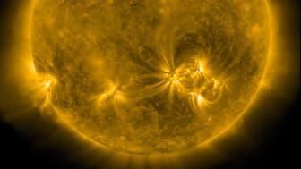 Solen 1 december 2020. Cred: NASA/SDO