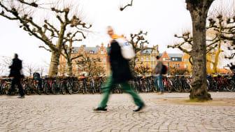 Sveland Djurförsäkringar flyttar till Lund.Fotograf: Christiaan Dirksen