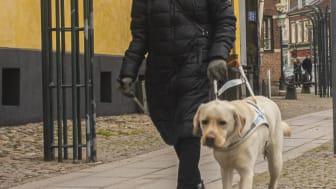 foto Birgitta o Jimmy.jpg