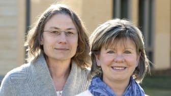 Yale hämtade smärtlindrings-expertis från Högskolan i Skövde
