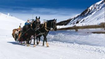 Kutsche im Schnee, Sertigtal