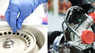 Bilproduksjon og kreftbehandling (2)