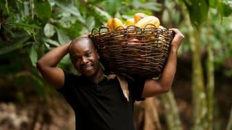 Fortin Bley välkomnar Fairtrades nya minimipris för kakao. Foto: Éric St-pierre.