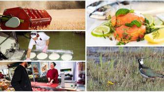 Utvecklingen mot en hållbar livsmedelsproduktion går åt rätt håll men vissa områden behöver stärkas, som den biologisk mångfalden. Foto: Peter Rutherhagen, Urban Wigert, Johan Wallander, Svenskt kött  och Scandinav Bildbyrå