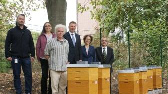 Elf Bienenvölker haben auf dem Gelände der Dortmunder Hauptverwaltung der SIGNAL IDUNA ein neues Zuhause gefunden. Foto: SIGNAL IDUNA
