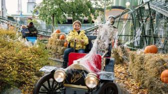 Barnvänliga Halloween hittar man på Lilla Området