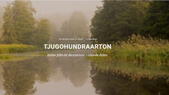 Björn Dahlfors: Retrospektiva fotoprojekt av en naturfotograf som sadlar om