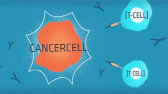 Immunterapi för att bekämpa cancer, video