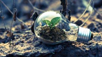 Värna en hållbar omställning och ett teknikneutralt regelverk för nära nollenergihus.