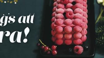 Picards veganska bûche med hallon & grapefruktssorbet på krispig mandelbotten