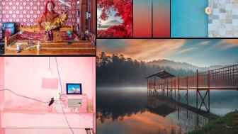Ogłoszono zwycięzców kategorii i zdobywców wyróżnień w konkursie otwartym Sony World Photography Awards 2021
