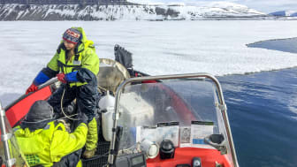 TerrACE-prosjektet, Svalbard (4)