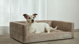 Carpe Diem Beds hundsäng för små hundar