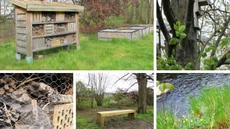 En hållbar utemiljö med plats för insekter