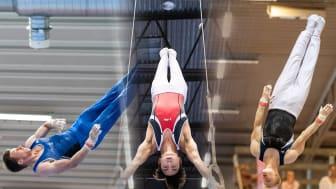 SM i manlig artistisk gymnastik 2021