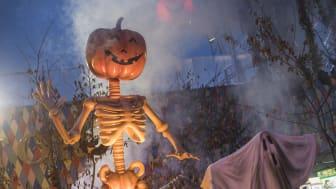 Halloween i Friheden åbner d. 10. oktober. Foto: Tivoli Friheden.