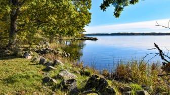 Skärva naturreservat lockar många att vandra och cykla.