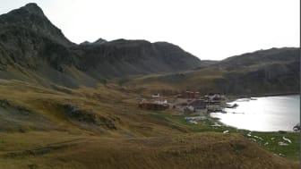 Grytviken from viewpoint