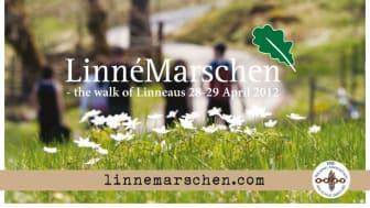 Linnémarschen är nu officiell medlem i IML Walking Association