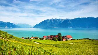 Genfersee mit den Weinterrassen von Lavaux. © antares71